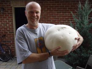totem blaze mushroom