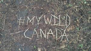 two4adventuremywildcanada